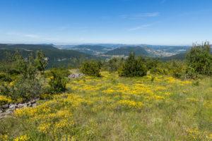 Panorama sur la Vallée du Tarn